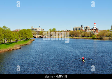 Harvard University and Charles River in early spring. On person rowing in the Charles, green trees along river banks, - Stock Photo