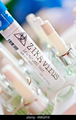 Czech healthcare and medicine - dangerous Zika virus in a laboratory - tubes, tests, vaccination, injection, antidote, - Stock Photo
