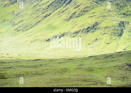 View on a mountain slope in the Scottish highlands, Kinross county, Scotland, UK. - Stock Photo