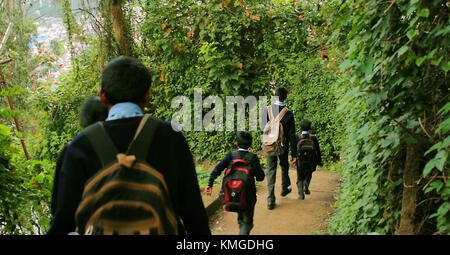 Children go to school, Little boys and girls with a backpack go to school. Back view. - Stock Photo