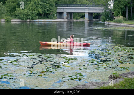 Young woman navigating her kayak beside the water lilies in the channel between Lake of the Isles and Lake Calhoun. - Stock Photo