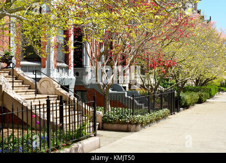 Back Bay. Boston. Colorful gardens of Victorian row houses in early spring. - Stock Photo