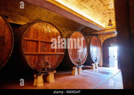 Cider barrels, Sidreria Petritegi, Astigarraga, Gipuzkoa, Basque Country, Spain, Europe - Stock Photo