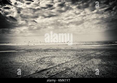 View of the beach with flying birds and clouds. Praia de Vila, Praia de Ancora, Viana do Castelo, Portugal. - Stock Photo