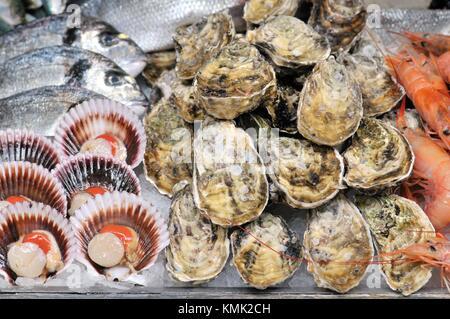 Sea food. Pectinidae (Pectinidae), commonly known as scallops, oysters and fish, Mercat de Sant Josep aka La Boqueria - Stock Photo