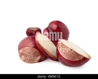 Sliced chestnuts (lat .: Aesculus hippocastanum) in front of three other chestnuts on white ground. - Stock Photo