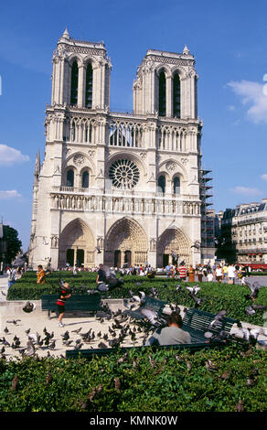 Notre-Dame cathedral. Paris. France - Stock Photo