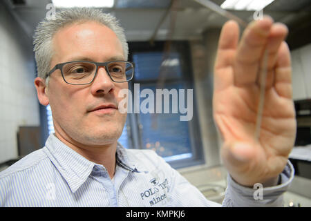 Stuttgart, Germany. 5th Dec, 2017. Candle tester Volker Albrecht looking at a sheet of glass, which is used to test - Stock Photo