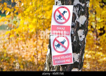 zákazové cedule - psi v parku, Česká republika - Stock Photo