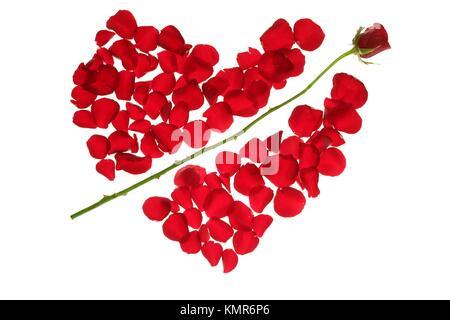 Cupid Arrow In A Red Rose Petals Heart Shape Love Symbol Stock