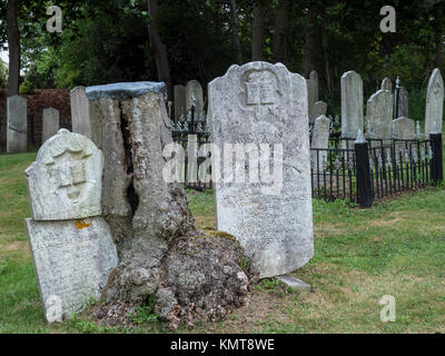 Old French Cemetery, Lunenburg, Nova Scotia, Canada. - Stock Photo