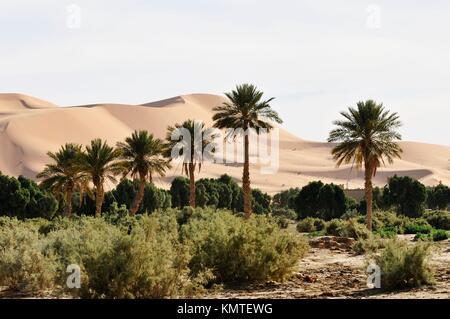 The Great Dune, Erg Chebbi, Merzouga, Errachidia province, Morocco, Africa, december 2009 - Stock Photo