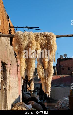 Leather tanning at Medina´s souk, Marrakech, Morocco, Africa, december 2009 - Stock Photo