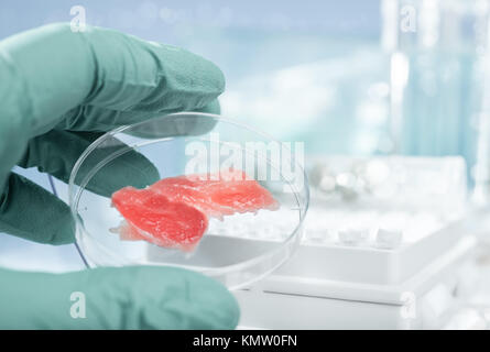 Meat grown up in laboratory conditions in a plastic dish - Stock Photo