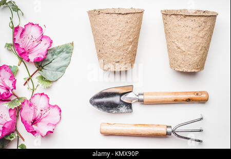 Gardening equipment  flat lay for planting and weeding, with garden tools, flowers plant , pot  on white table background, - Stock Photo