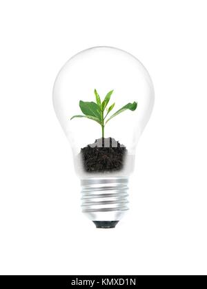 A light bulb isolated against a white background - Stock Photo