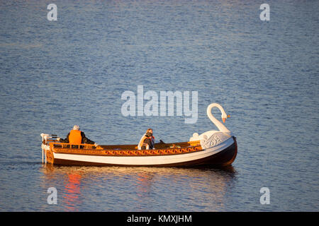boat in a shape of a swan on a lake - Stock Photo