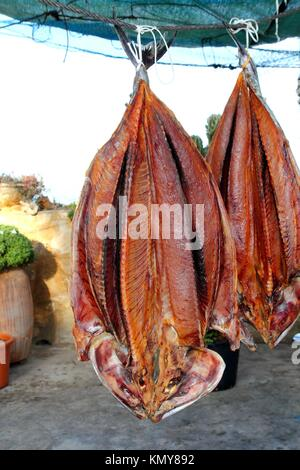 bonito tuna salted dried fish mediterranean sarda style - Stock Photo