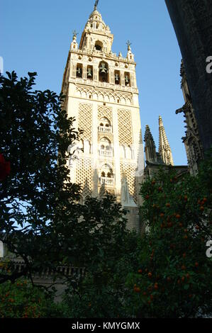The Tower of Seville Cathedral,Seville Spain - Stock Photo