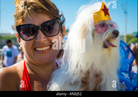 RIO DE JANEIRO - FEBRUARY 19, 2017: A dog in Wonder Woman costume poses with her owner at the annual Blocão pet - Stock Photo