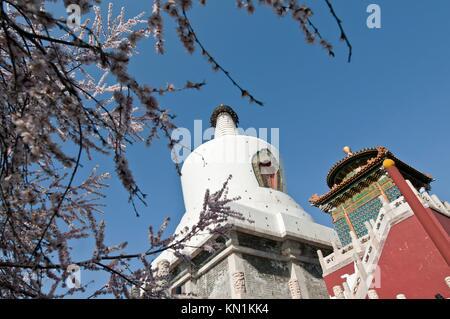 The Bai Ta (White Pagoda or White Dagoba) stupa in Beihai Park, Beijing, China. - Stock Photo