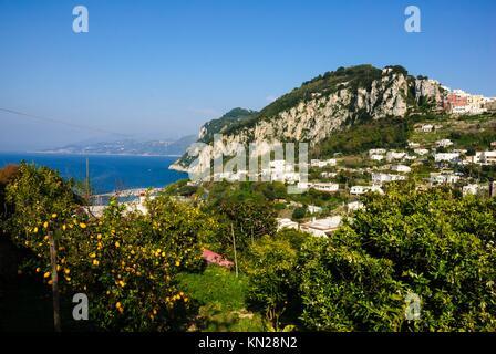 Isle of Capri, Capri, Province of Naples, Campania, Italy, Europe - Stock Photo