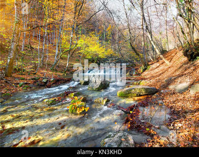 Beautiful fast river in mountain forest at sunrise. - Stock Photo