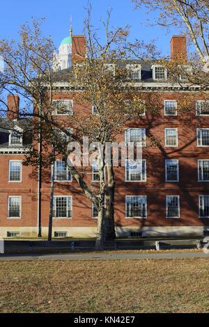 Sunny fall day at Harvard University campus in Cambridge, MA, USA - Stock Photo