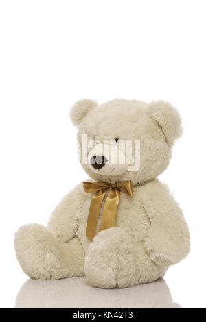 White teddy bear isolated on white background. - Stock Photo