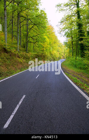 Pyrenees curve road in forest of Spain. - Stock Photo