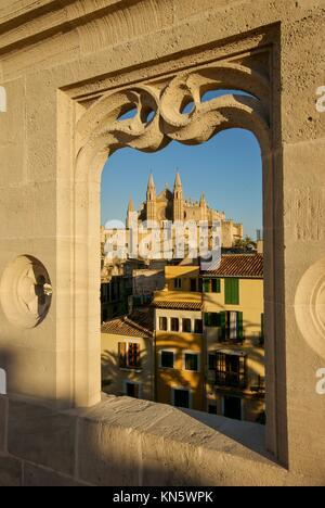 The Seo cathedral of Palma from lonja. La Llotja, XV century. Palma. Mallorca. Balearic Islands. Spain. - Stock Photo