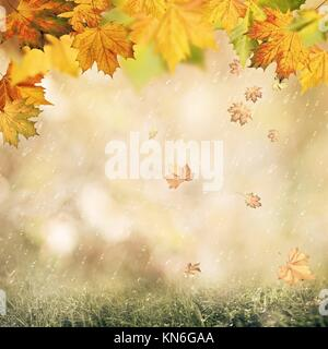 Abstract autumnal backgrounds with beauty bokeh and rain drops. - Stock Photo