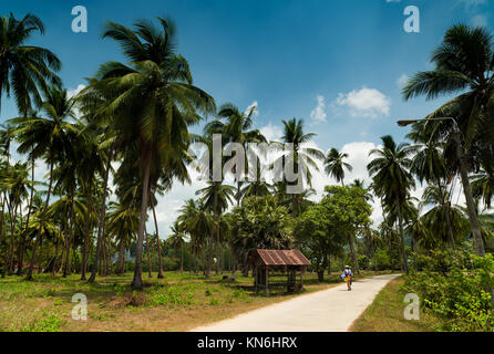 Ko Samui - Thailand - Stock Photo
