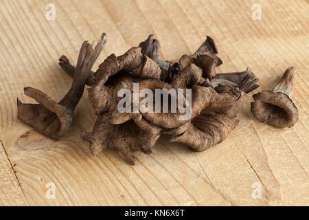 Fresh raw horn of plenty mushrooms. - Stock Photo