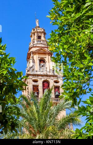 Torre del Alminar Bell Tower Spire Trees Palms Mezquita Cordoba Andalusia Spain. Created in 785 as a Mosque, was - Stock Photo