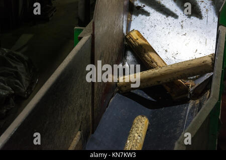 Debarking Machine Feed Logs Paper Mill Indoors Entrance Machinery Industrial Wood Processing - Stock Photo