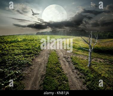 Dry tree near country road under fool moon. Elements of this image furnished by NASA. - Stock Photo