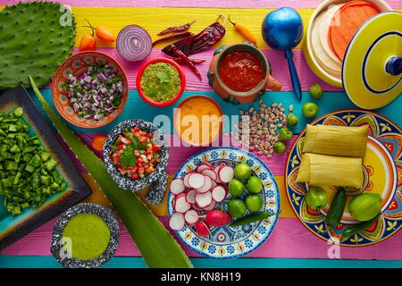 Mexican food mix with sauces nopal and tamale agave guacamole. - Stock Photo