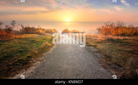Asphalted road through countryside in red autumn. - Stock Photo