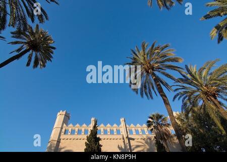 La Llotja medieval building, palm trees and blue sky in Palma de Mallorca, Balearic islands, Spain - Stock Photo