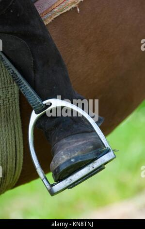 Dressage rider and horse closeup boot in stirrup detail, France. - Stock Photo