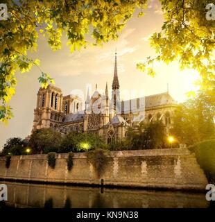 Notre Dame in Paris at sunset, France. - Stock Photo