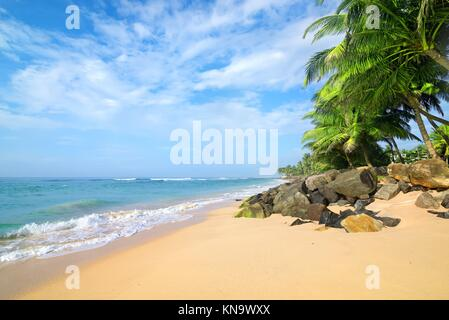Stones and palm trees on a sandy beach of Gala in Sri Lanka.