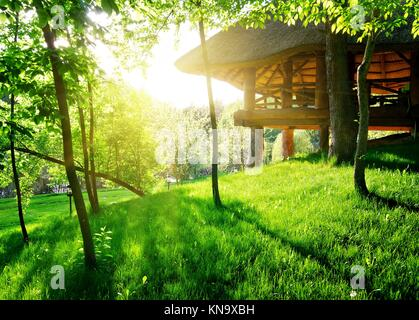 Gazebo among the green trees in sunny day. - Stock Photo