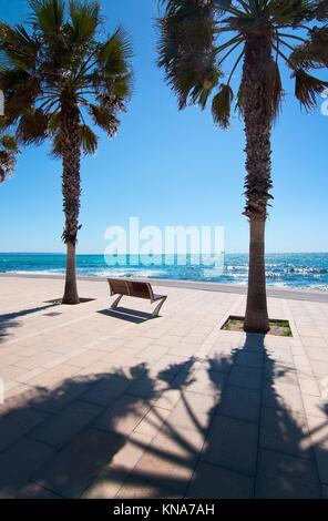 PORTIXOL/MOLINAR, MALLORCA, BALEARIC ISLANDS, SPAIN: Peaceful bench seat with ocean view among palm trees in Palma - Stock Photo