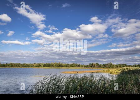 Lake near ''Emerald'' recreation base in Chernobyl Nuclear Power Plant Zone of Alienation around nuclear reactor - Stock Photo