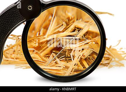 Magnifier enlarges a needle in haystack isolated on white background. - Stock Photo