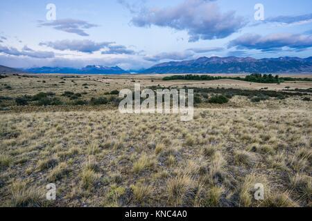 Pampas near Lago Roca, El Calafate ,Parque Nacional Los Glaciares Patagonia, Argentina. - Stock Photo
