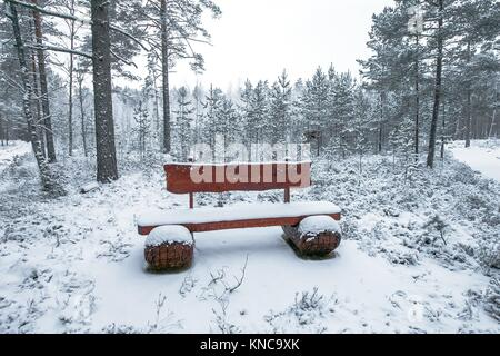 Wooden bench in the winter park. - Stock Photo