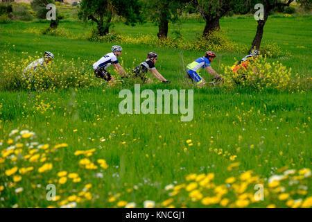 ciclistas, Algaida, Mallorca, balearic islands, spain. - Stock Photo